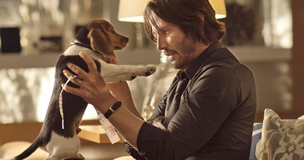 A los directores de John Wick se les ordenó no matar al perro, pero lo hicieron de todos modos