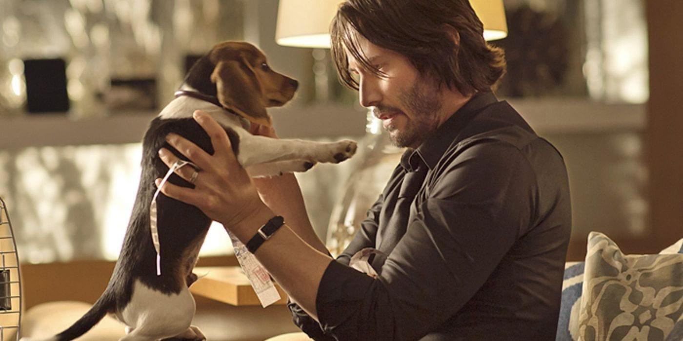 John Wick: Studio intentó salvar al perro