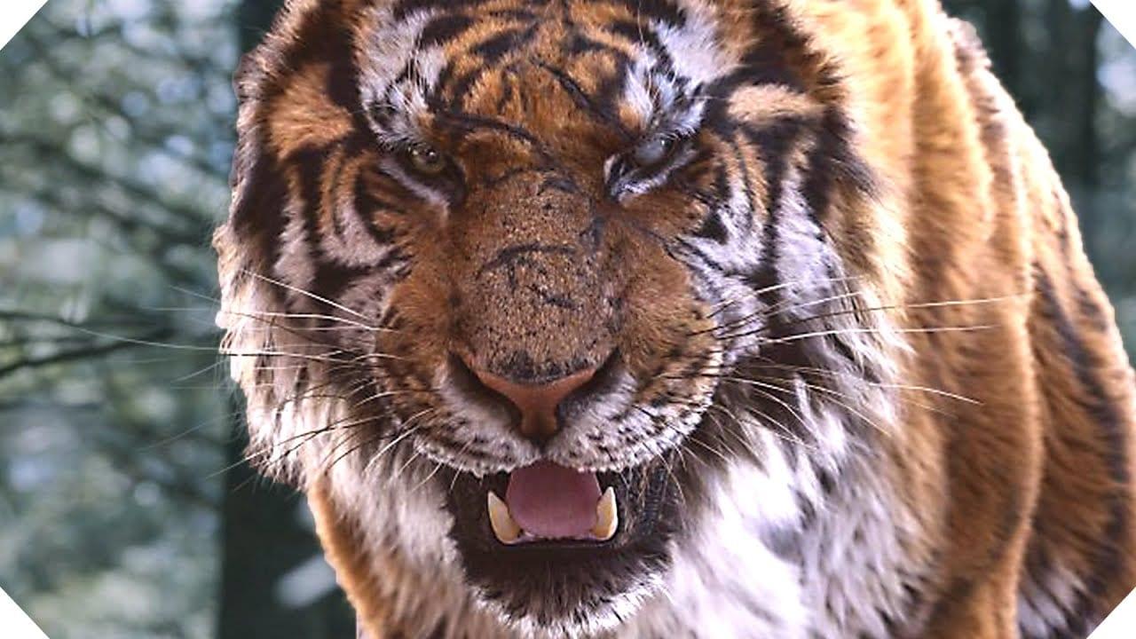 Película Tiger King: esto es lo que sabemos Documental sobre crimen de Netflix