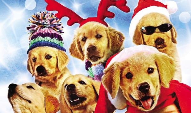 Películas navideñas menos conocidas: Santa's Little Yelpers